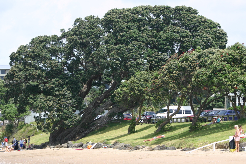 Red Beach's iconic beachfront landmark