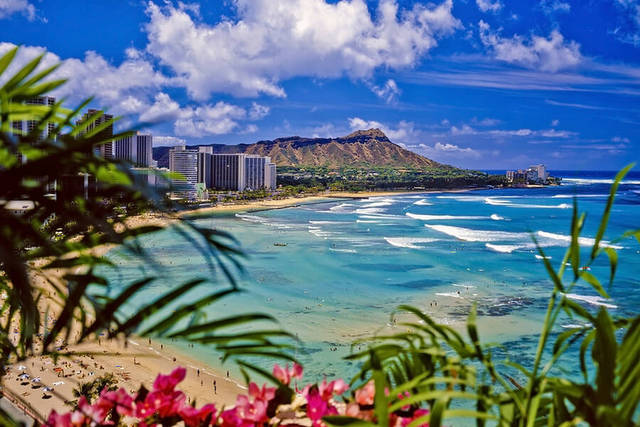 Win a trip to Hawaii !